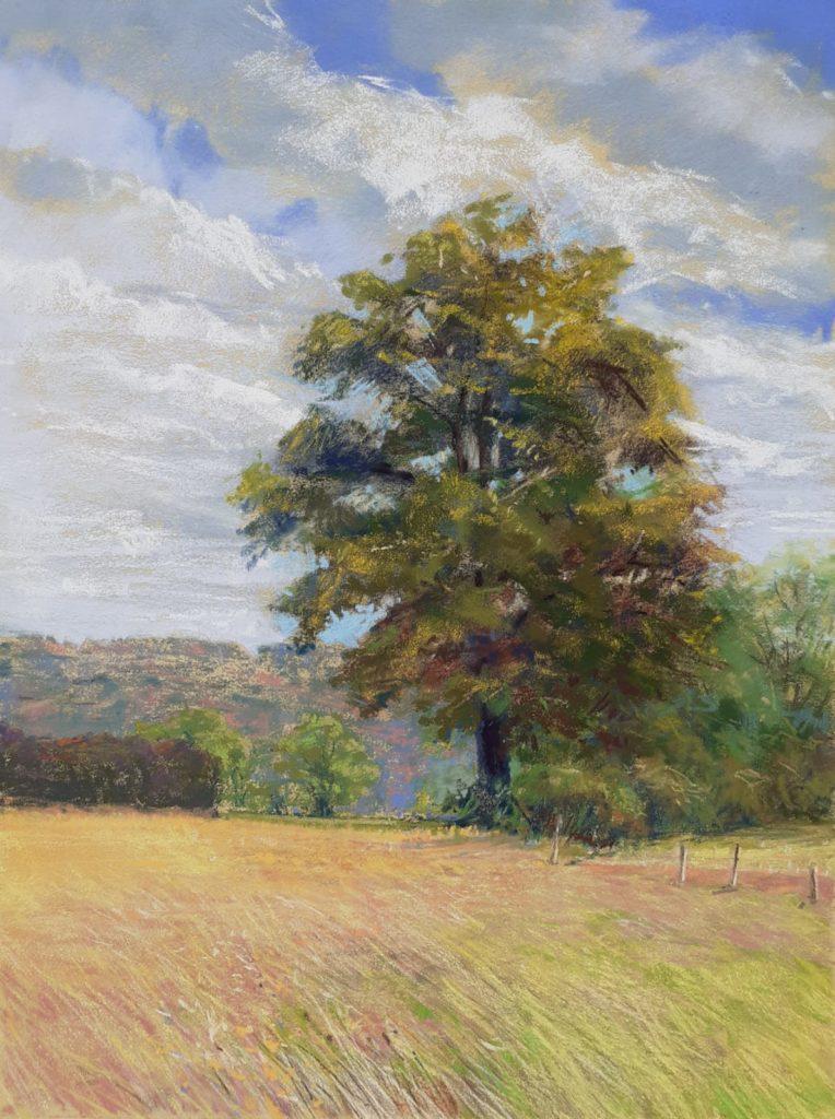 21067l_arbre_du_soir_puifferrat